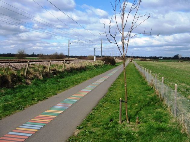 DNA cycle path